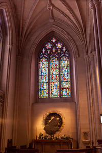 2011 Natl Cathedral-5408