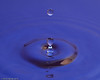 water_drops-DSC_0955