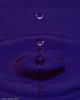water_drops-DSC_1194