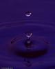 water_drops-DSC_1215