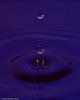 water_drops-DSC_1239