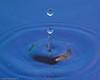 water_drops-DSC_0792