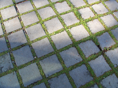 Permeable pavers allow water to flow into the ground and not into the sewers.