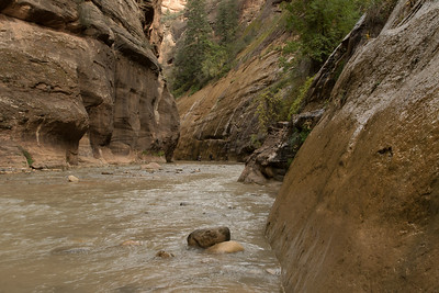 Virgin River, exiting the Narrows, Zion Park, Utah
