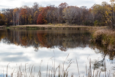 Mayberry State Park