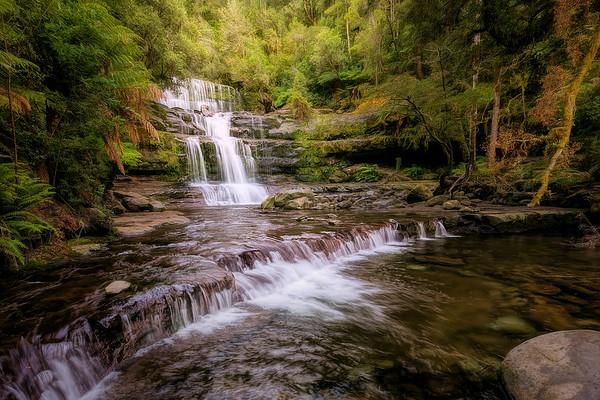 (2565) Liffey Falls, Tasmania, Australia