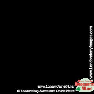 ldnh_leaf_watermark