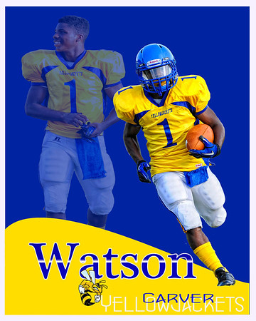 Watson's Carver poster 2012