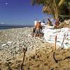 2001/02.  Sandbagging the El Burro restaurant.  The entire beach a rubble of rocks.