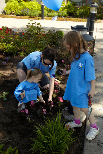 Wayzata, MN - Planting by volunteers around town here today Saturday May 15, 2010 Photo by © Todd Buchanan 2010 Technical Questions: todd@toddbuchanan.com; Phone: 612-226-5154.