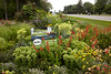 Wayzata,  -  Wayzata Gardens - City of Wayzata Gardens ***GARDEN #11 ***Heidi Heiland's Garden ath Wayzata Blvd and Ferndale. Date: Saturday July 31, 2010 Photo by © Todd Buchanan 2010 Technical Questions: tbuchanan@greenspring.com; Phone: 612-226-5154. Keywords: flowers, gardens, suburban, city gardens, summer,