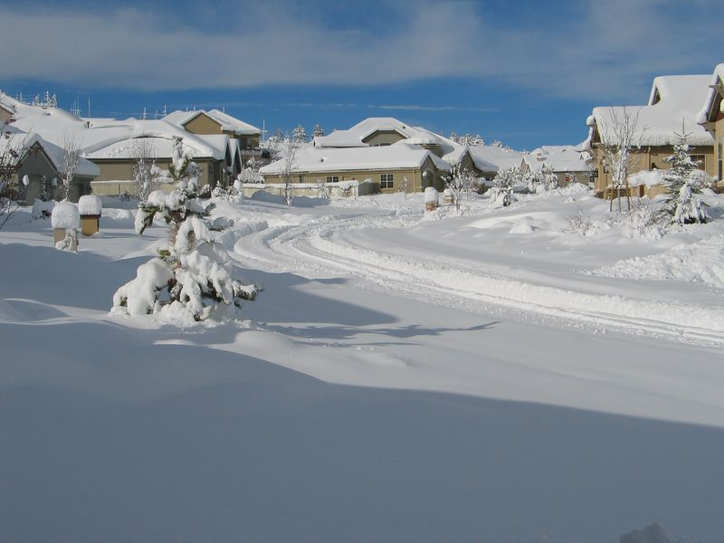 We woke up to this on New Year's Eve, 2004. Reno averages 25 inches of snow per year, this storm was 18 inches.