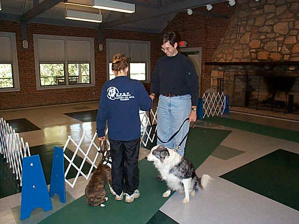 "<p class=""ContentSubHeader""> ""PLEASED TO MEET YOU!"" Workshop </p> <p class=""ContentText""> Would you like your dog to sit politely when greeting people rather than jumping up? This class will use fun, interactive training exercises to teach your pooch how to greet politely. <br><br><br> <li class=""ContentText"">  When: Stay tuned! <br> Where: SHS* in Bellevue</li> </p> <p class=""ContentText""> </li> </p>"