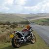 Buell on Dartmoor 1 s