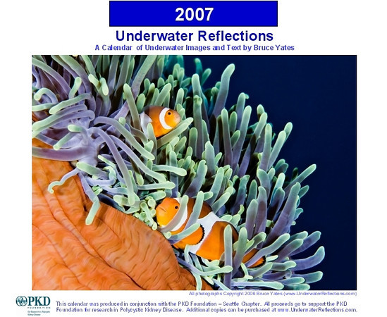"<p class=""ContentText""><b> Polycystic Kidney Disease (PKD) Foundation </b><br>(<a href=""http://www.pkdcure.org"" target=""_blank"">www.pkdcure.org</a>)<br><br> In 2007, I produced a calendar of my underwater photos to raise money for the PKD Foundation. My company, Appropriate Balance (www.abfsnw.com) paid for all the production costs, so ALL proceeds (more than $12,000) went to the PKD Foundation to increase awareness of PKD and fund research to find a cure!  Please visit their website to learn more and see how you can help!  </p>"