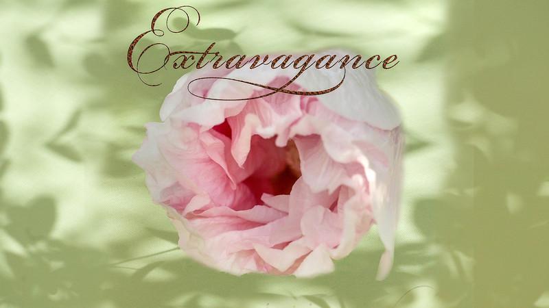 Extravagance II