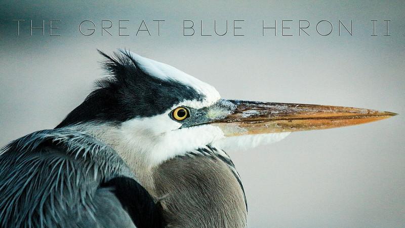 Heron II video-website 09-14