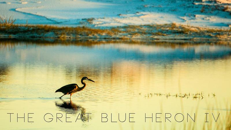 Heron video IV website 09-14