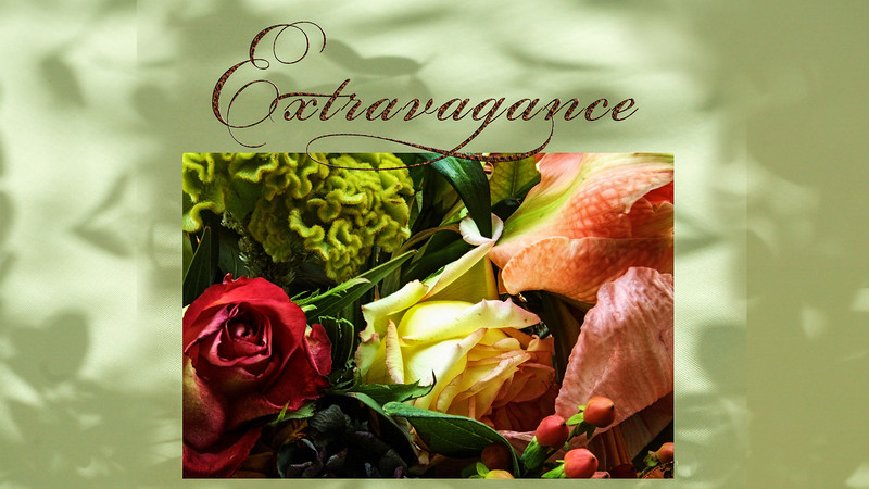 Extravagance I video