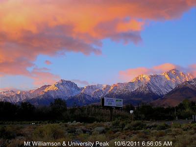 Webcam - Williamson