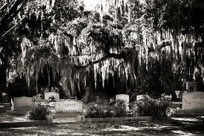 Bonadventure Cemetary, Savannah, GA 2012  #5