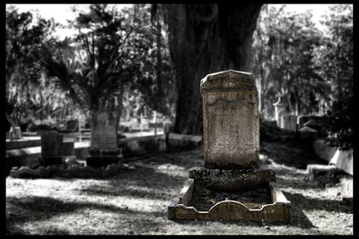 Bonadventure Cemetary, Savannah, GA 2012 #1