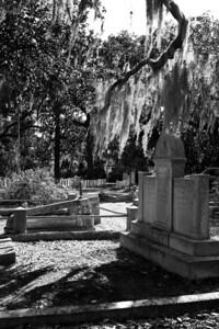 Bonadventure Cemetary, Savannah, GA 2012  #3
