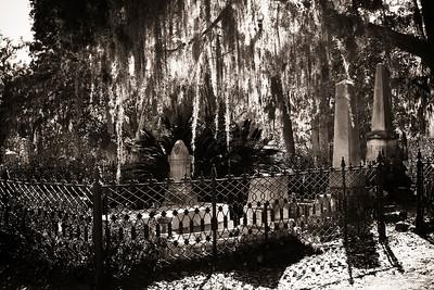 Bonadventure Cemetary, Savannah, GA 2012  #4