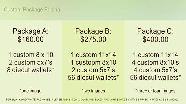 Custom Packages 2014