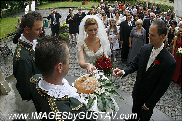 wedding photographer union nj408