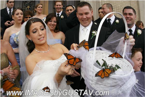 wedding photographer union nj435