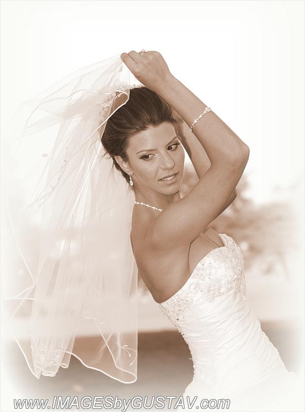 wedding photographer union nj394
