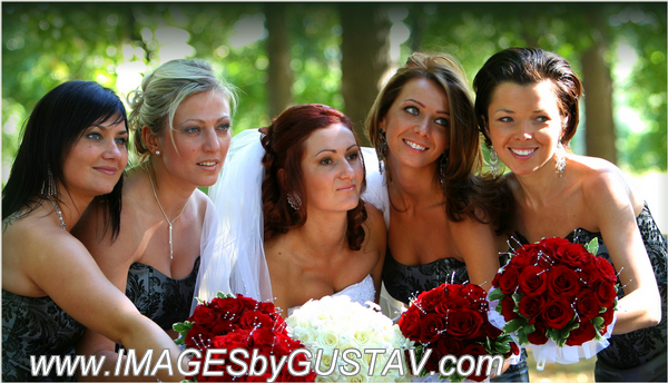 wedding photographer union nj434