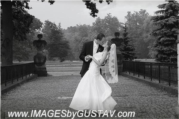 wedding photographer union nj371