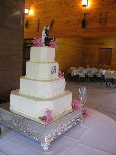 Burdeshaw Wedding Cake Oct 2009, Atlanta GA Copyright Sue Steinbrook