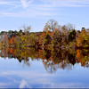 Blackwater<br /> <br /> 12 x 18 single white matted Print framed 18 x 24 - $225.00<br /> <br /> 12 x 18 Print - $150.00