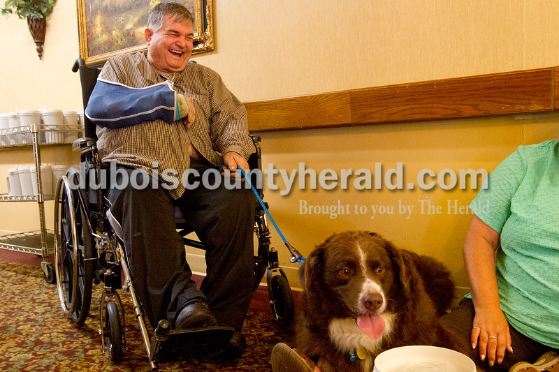 """Brooke Stevens/The Herald<br /> Scenic Hills Care Center resident Albert Elmer laughed at Whisky, an Australian Shepard belonging to Randi Schroeder of Celestine, Friday afternoon during a dog agility show. Schroeder brings her Australian Shepard dogs to Scenic Hills weekly to visit with residents. """"The residents ask about the dogs all week long. They just love when the dogs visit,"""" said Activity Director Anna Faulkenberg of Leavenworth."""