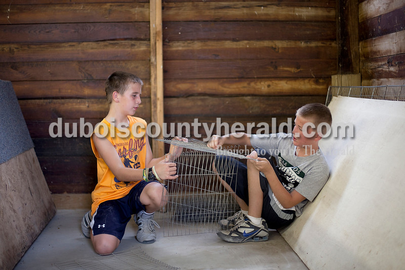 Dave Weatherwax/The Herald<br /> Reese Verkamp, 10, left, and Caden Betz, 9, both of St. Anthony, worked together to unhook pieces to the animal cages that were tangled together last Thursday night in the small animals barn at the Dubois County 4-H Fairgrounds. Several of the 4-H participants and their parents worked together to setup the barn in preparation of the upcoming fair.
