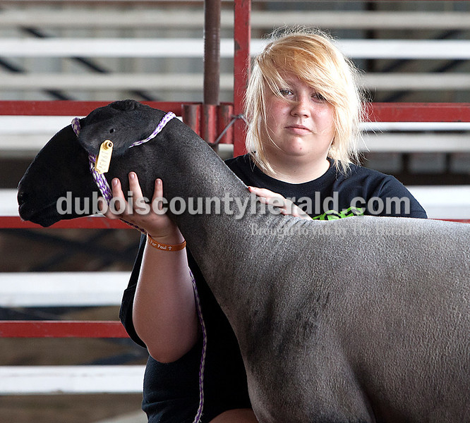 Emily Oeding: grand champion breeding ewe — wool