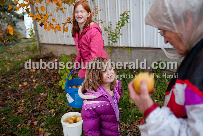 Rachel Mummey/The Herald<br /> Sophie Gubbins of Jasper, 5, center, smiled up at her neighbor Lucille Blume of Jasper, right, after she and her sister Abby, 10, background, helped Blume pick up pears from a neighbors's tree on 7th Street in Jasper on Monday. The three gathered as many pears as possible because overnight freezing temperatures would have ruined them.