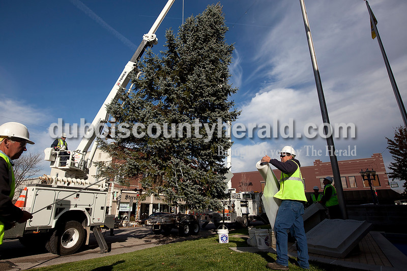 Dave Weatherwax/The Herald<br /> Jasper Municpal Electirc Utility workers Jeff Durcholz, left, Larry Matheis and Casey Hall worked to put the blue spruce tree in place on the west side of the Dubois County Courthouse on Monday morning.