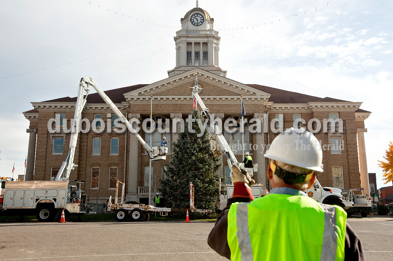 Dave Weatherwax/The Herald<br /> Jasper Municipal Electric Utility worker Jeff Durcholz, foreground, signaled which direction the blue spruce tree needed to be shifted in order to get it standing straight Monday morning as the tree was installed on the west side of the Dubois County Courthouse.