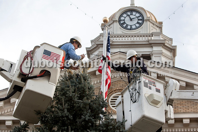 Dave Weatherwax/The Herald<br /> Jason Bauer, left, and Pat Bonifer, of the Jasper Municipal Electric Utility, wrapped Christmas lights around the 31-foot-tall blue spruce tree that was set up on the west side of the Dubois County Courthouse on Monday morning. The tree came from the property of John Birge of Jasper.