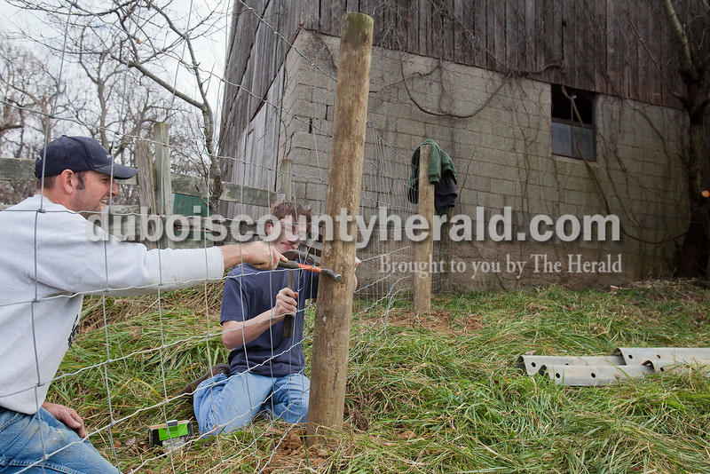 Rachel Mummey/The Herald<br /> Brian Lammers of Huntingburg, and his son Justin, 13, worked on rebuilding a section of fence where they keep cattle along Hwy 64 in Huntingburg on Saturday. Brian said he was working with his son so he'd gain the experience of fence building.
