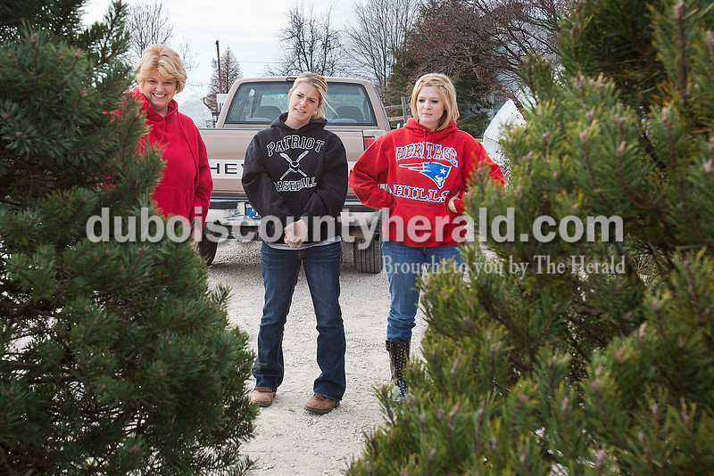 """Rachel Mummey/The Herald<br /> Brenda Kleiser of Fulda, left, compared two christmas trees with her daughters Karla and Cheryl at Jeff Weyer Farm & Nursery in Ferdinand on Saturday. Weyer said although his whole sales have gradually decreased over the years, retail among families and individuals has stayed relatively the same. """"They come out here because they know they're cut fresh out here,"""" Weyer said of customers who come out to his nursery."""