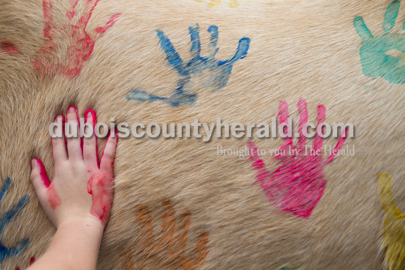 Olivia Corya/The Herald<br /> Madison Giesler of Jasper, 12, contributed her handprint to a horse being painted as part of Christmas for St. Jude, a fundraiser for the children's hospital, at Briar Bush Farm in Celestine on Saturday. The event, which also featured a petting zoo and horse rides, was organized by Luckie Hopf and took place on her sister Ruth Bush's property. Madison is a former riding student of Hopf's.