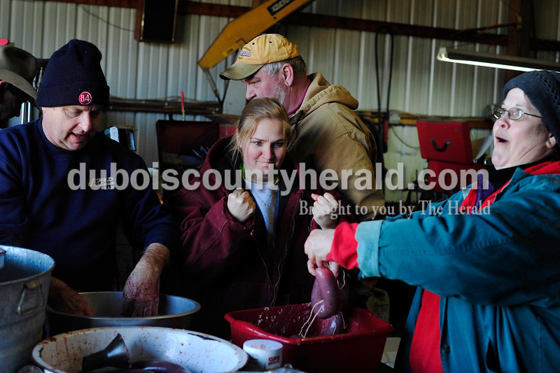 Matthew Busch/The Herald<br /> As Humbert family and friends gathered to butcher hogs on Saturday in Dubois, Vanessa Zehr of Dubois, center, pumped her fists as she and Renee Voelkel of Dubois, right, tied a successful knot on a piece of blood sausage on Saturday. Mark Humbert is pictured left and family friend Curt Hall is pictured behind. The family has been butchering hogs in the area for over 50 years.