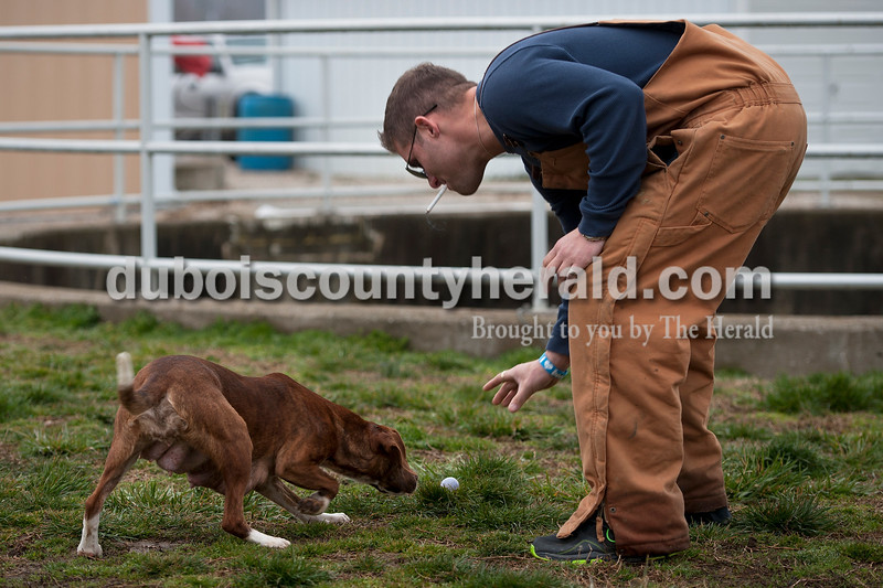 Matthew Busch/The Herald<br /> Brad Dearing of Jasper placed an egg right as Avery the dog sniffed it out outside the Huntingburg Humane Society dog Easter egg hunt Sunday morning outside their facility. Dearing and the rest of the volunteers Sunday morning volunteer regularly through the work release community service program at the Dubois County Community Corrections Center in Jasper where they stay.