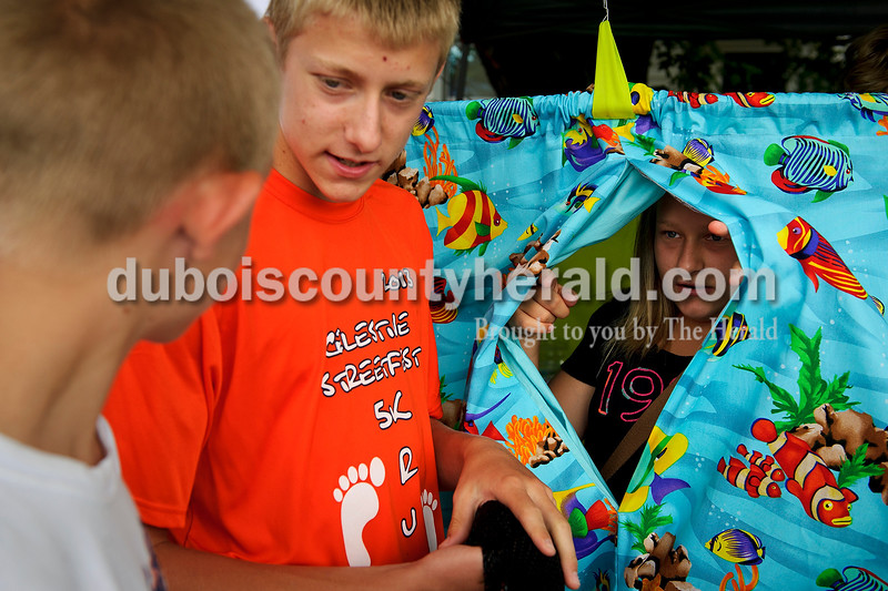 Jydia Burke of Celestine, 12, right, peeked through partition of the fish pond game to talk to Jake Betz  of Schnellville, 13, left, and her brother Grant, 15,  during the Celestine Street Fest on Saturday as they operated the game for smaller children.  Matthew Busch/The Herald