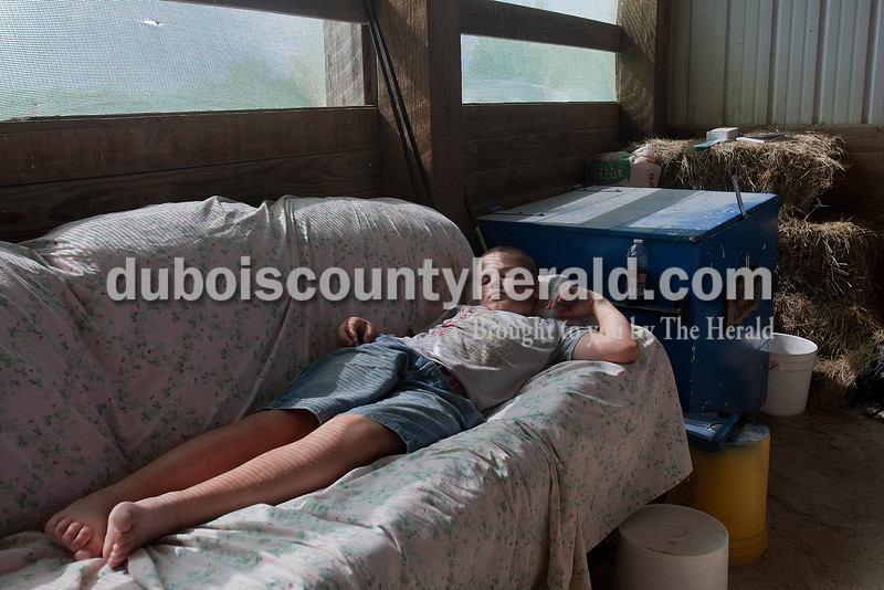 Levi Schaeffer of Huntingburg, 11, rested between chores in the cattle barn at the Dubois County 4-H Fairgrounds on Sunday. Rachel Mummey/The Herald